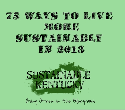 sustainable2013