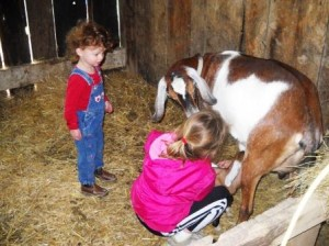 Let children participate in all cycles of farm life, from birthing of animals to preparing them for the table.